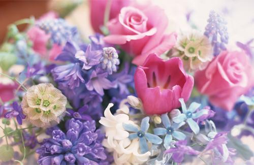 Flores naturales Úbeda