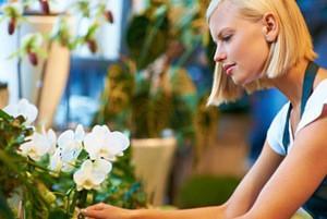 Florista en Úbeda